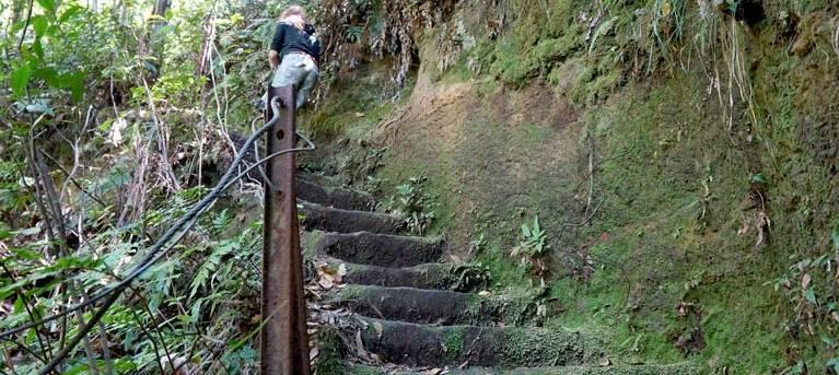 Den Fenella walking track Trail Hiking Australia
