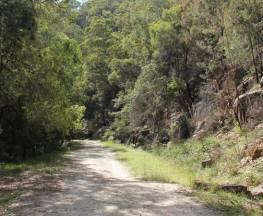 Devines Hill loop Trail Hiking Australia