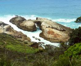 Diamond Head Loop walk Trail Hiking Australia