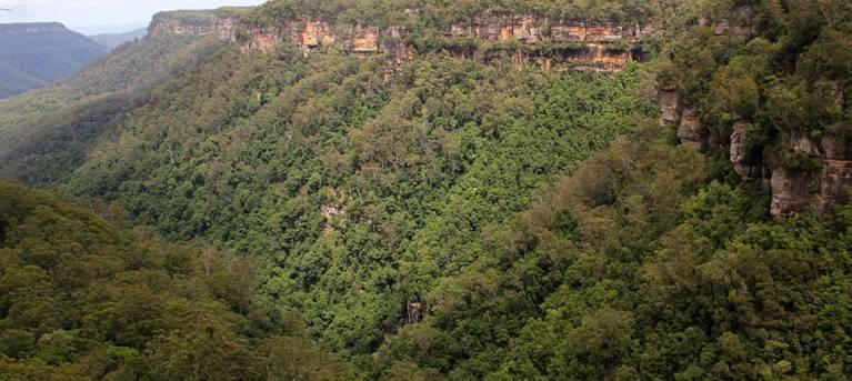 East Rim and Wildflower walking tracks Trail Hiking Australia