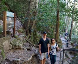 Echo Point to Scenic World via Giant Stairway Trail Hiking Australia