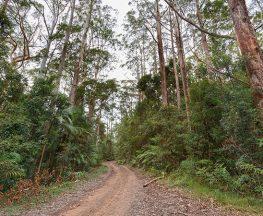 End Peak walking track Trail Hiking Australia