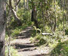 Euglah Rock walking track Trail Hiking Australia