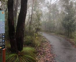 Fairfax Heritage walking track Trail Hiking Australia