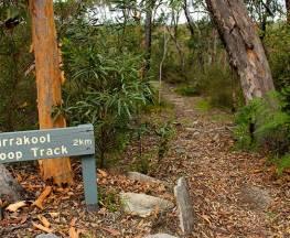 Girrakool loop track Trail Hiking Australia
