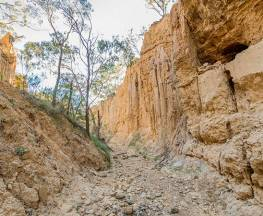 Golden Gully walking track Trail Hiking Australia