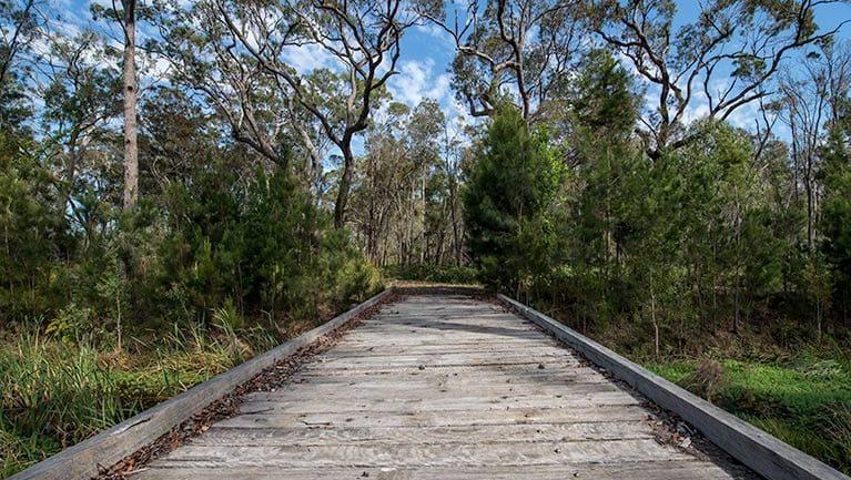 Googik Heritage walking track Trail Hiking Australia