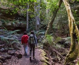 Grand Canyon track Trail Hiking Australia