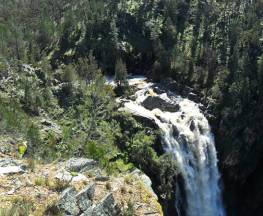 Grove Creek Falls walking track Trail Hiking Australia
