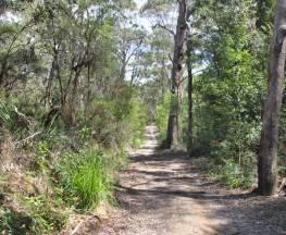 Heath and Bare Creek trails Trail Hiking Australia