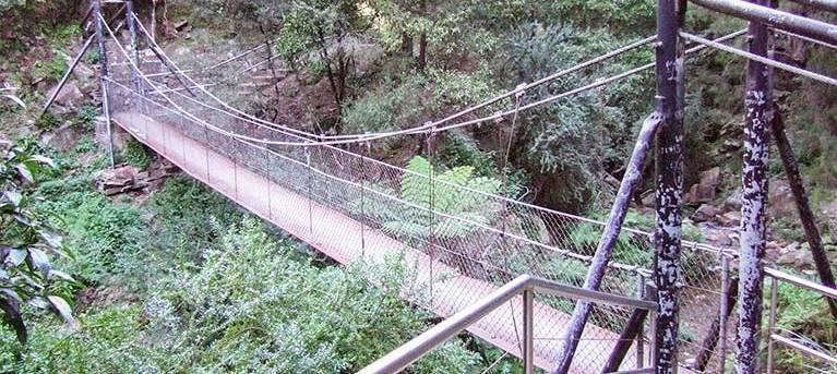 Jenolan River walking track Trail Hiking Australia