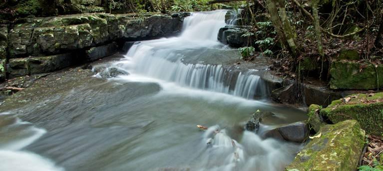 Jerusalem Creek trail Trail Hiking Australia