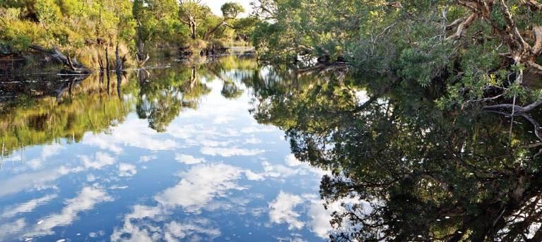 Jerusalem Creek walk Trail Hiking Australia