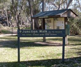 Junction walk Trail Hiking Australia
