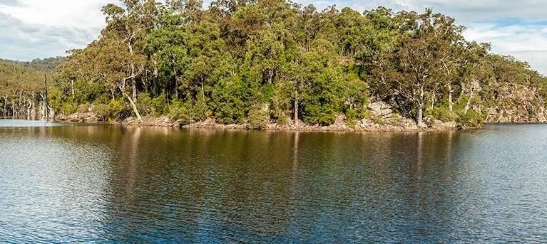 Kangaroo River walking track Trail Hiking Australia