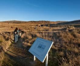 Kiandra heritage track Trail Hiking Australia