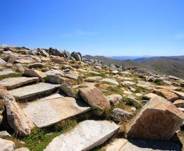 Kosciuszko walk - Thredbo to Mount Kosciuszko Trail Hiking Australia
