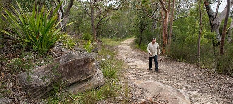 Lake Toolooma trail Trail Hiking Australia