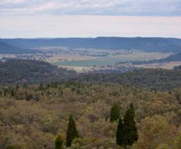 Lees Pinch lookout walking track Trail Hiking Australia