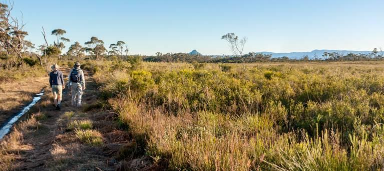 Little Forest walking track Trail Hiking Australia