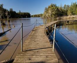 Longneck Lagoon walking track Trail Hiking Australia
