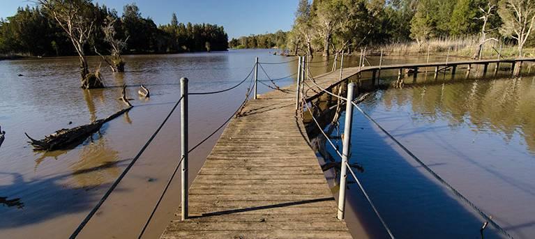 Longneck Lagoon walking track Trail Hiking Australia