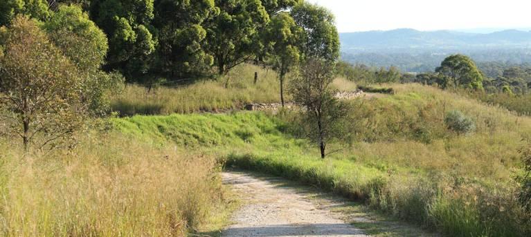 Loop trail Trail Hiking Australia