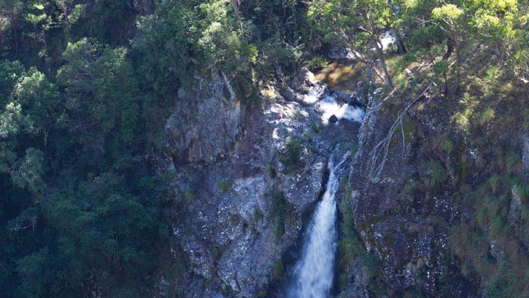 Lyrebird Falls walking track Trail Hiking Australia