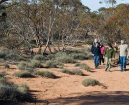 Mallee Stop walking track Trail Hiking Australia