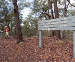 McDirtys walking track Trail Hiking Australia