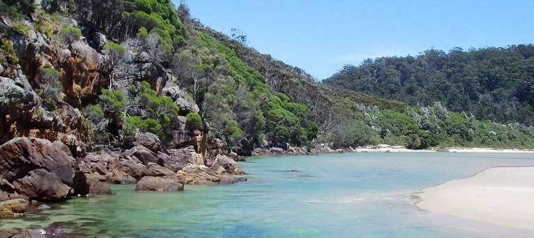 Merrica River nature trail Trail Hiking Australia