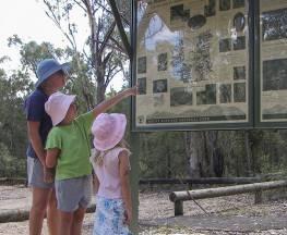 Mill-bullah walking track Trail Hiking Australia