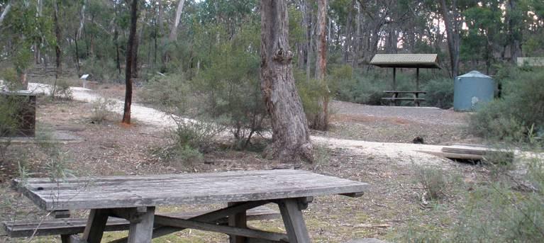 Molly O'Neill nature track Trail Hiking Australia