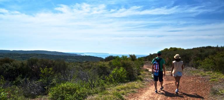 Moonee Beach trail Trail Hiking Australia