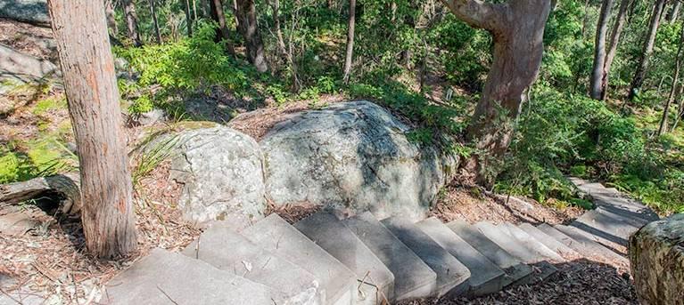 Mount Bouddi walking track Trail Hiking Australia