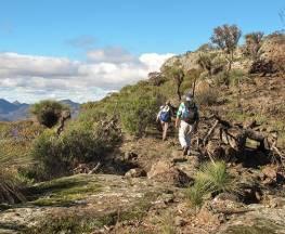 Mount Exmouth walking track Trail Hiking Australia