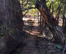 Mount Grenfell art site walk Trail Hiking Australia