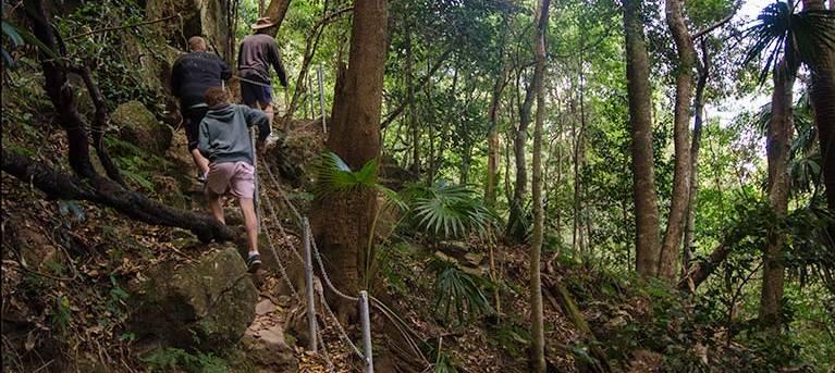 Mount Kembla Ring track Trail Hiking Australia
