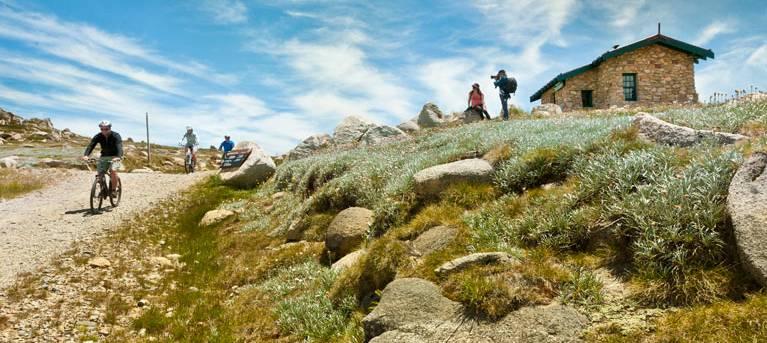 Mount Kosciuszko Summit walk Trail Hiking Australia