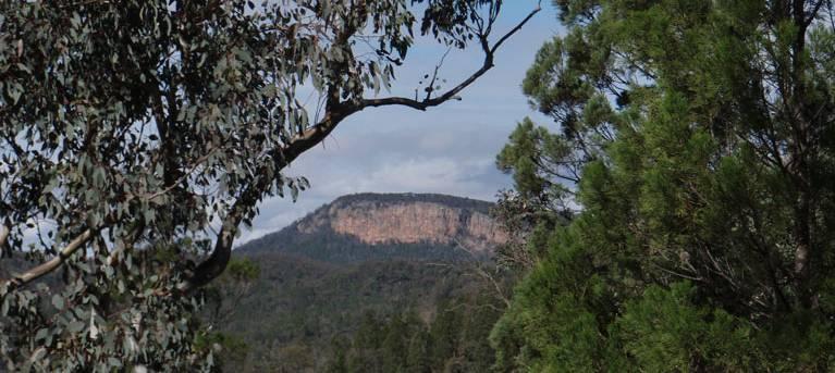 Mount Murga to Mount Nangar loop walk Trail Hiking Australia