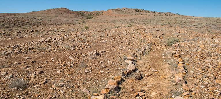 Mount Wood Summit walking track Trail Hiking Australia