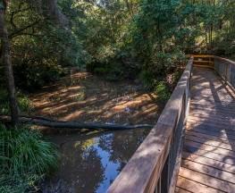 Ms Kellys walking track Trail Hiking Australia