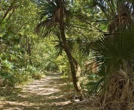 Mungo walking track Trail Hiking Australia