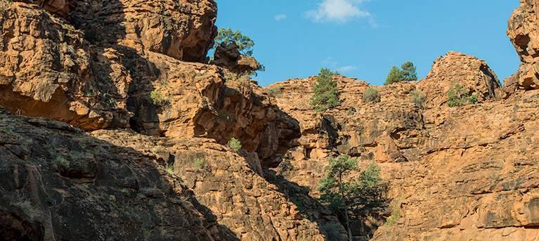 Mutawintji Gorge walk Trail Hiking Australia