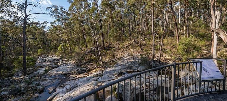 Myanba Gorge walking track Trail Hiking Australia