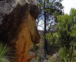 Mystery Face walking track Trail Hiking Australia