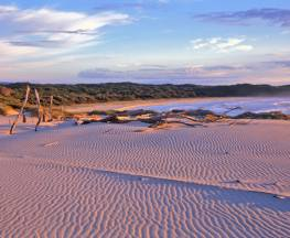 Nadgee wilderness walk Trail Hiking Australia