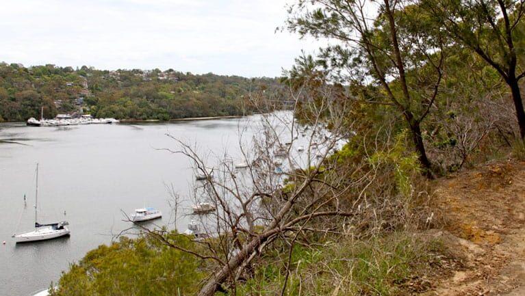 Natural Bridge track to Davidson Park Trail Hiking Australia