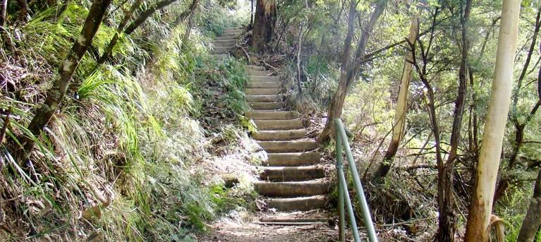 Nature track Trail Hiking Australia