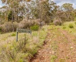 Old Mountain Road walking track Trail Hiking Australia